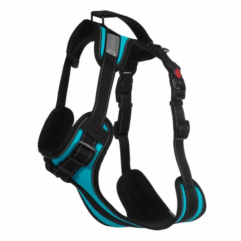 Image of SOLID HARNESS 330 TURQ XS