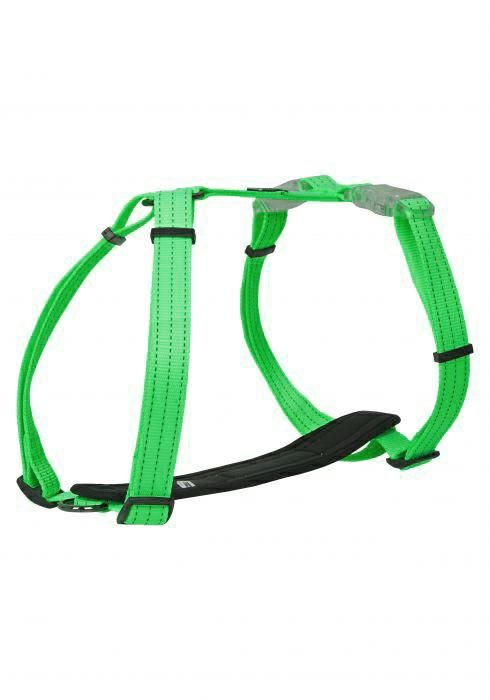 Image of NEON LIGHT HARNESS EMERALD XXS38