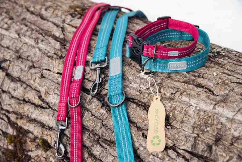 Image of TRUE LEASH BURGUNDY 682 SMALL