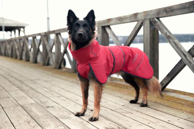 Image of WINDY JACKET CORAL RED 642 25